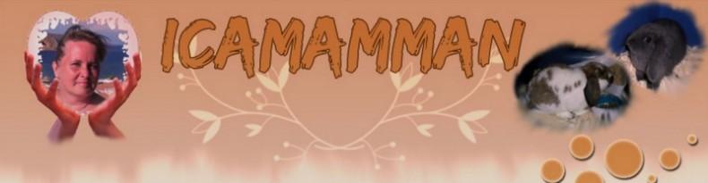 icamamman - mitt liv som mamma, fru och kassörska